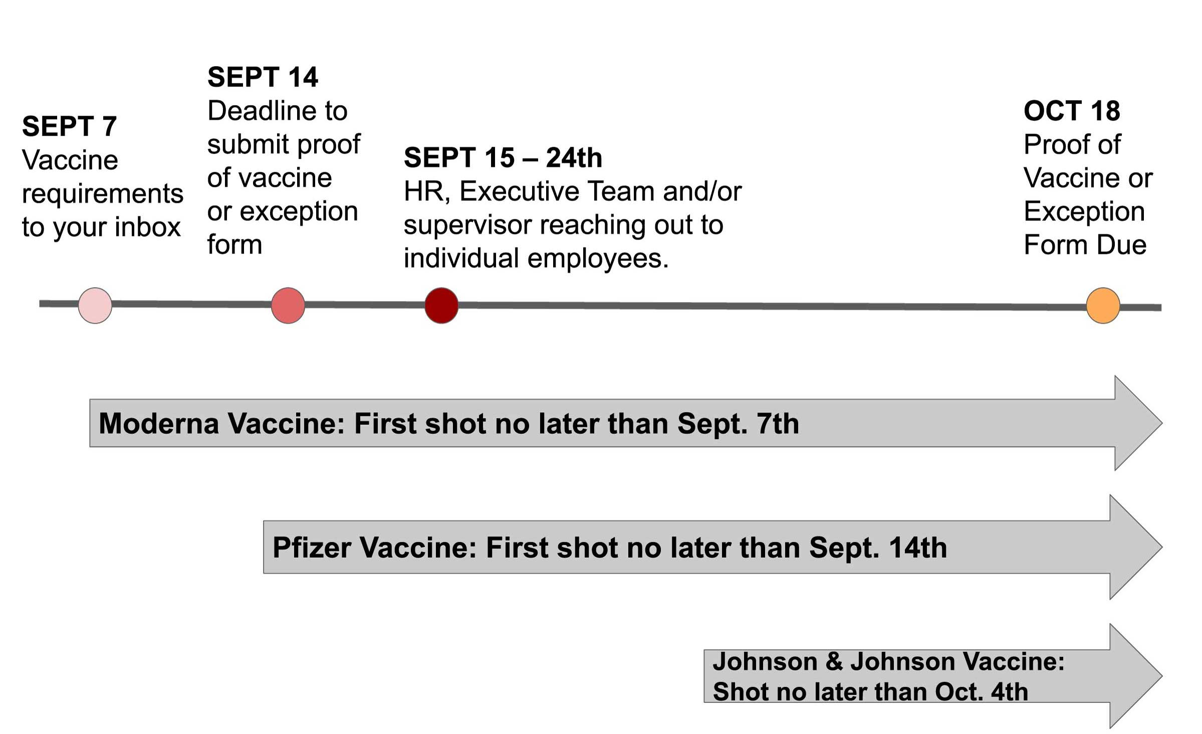 visual graphic of vaccine timeline